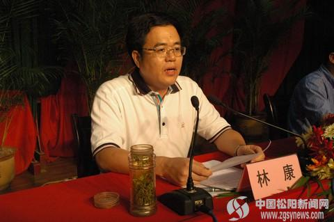 县委副书记,县长林康作重要讲话图片
