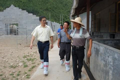 林康到象溪镇调研农村发展工作图片